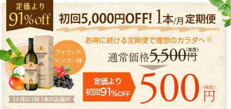 初回500円キャンペーン